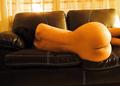 Sarah Shahi nude leaked photos.