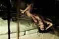 Alejandra Guilmant full frontal nude